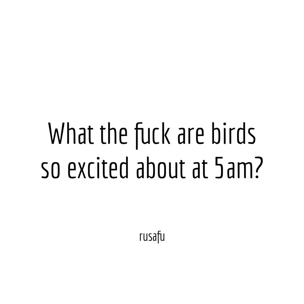 What the fuck are birds so excited about at 5am?